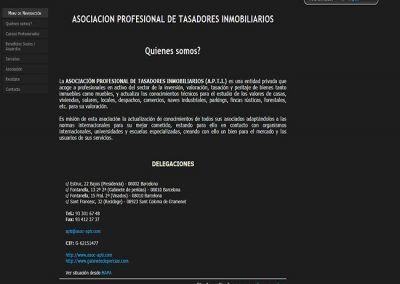 Proyecto de Asociación Profesional de Tasadores Inmobiliarios