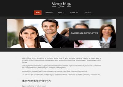 Proyecto página web Perito Profesional