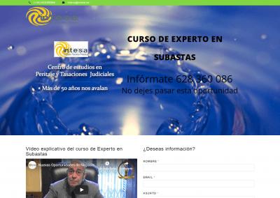 Página web curso de experto en subastas